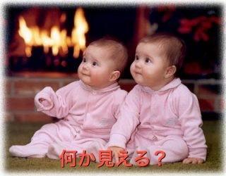 何かを見つめる双子.JPG