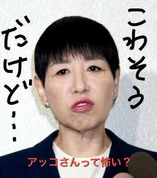 起こっている和田アキ子.JPG